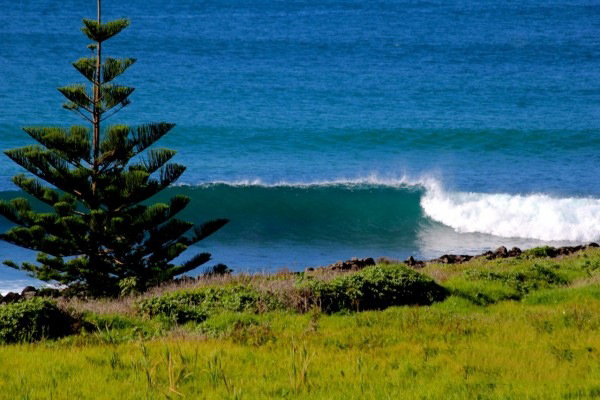 Lennox-Head-surfing-spot-image-North-Coast-NSW-Australia-4-600x400