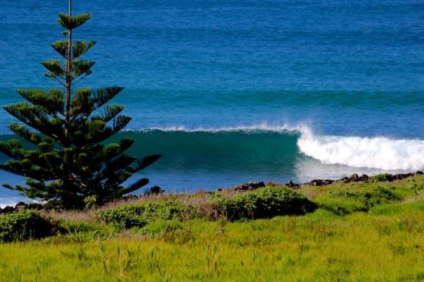 Lennox-Head-surfing-spot-image-North-Coast-NSW-Australia-4-600x400
