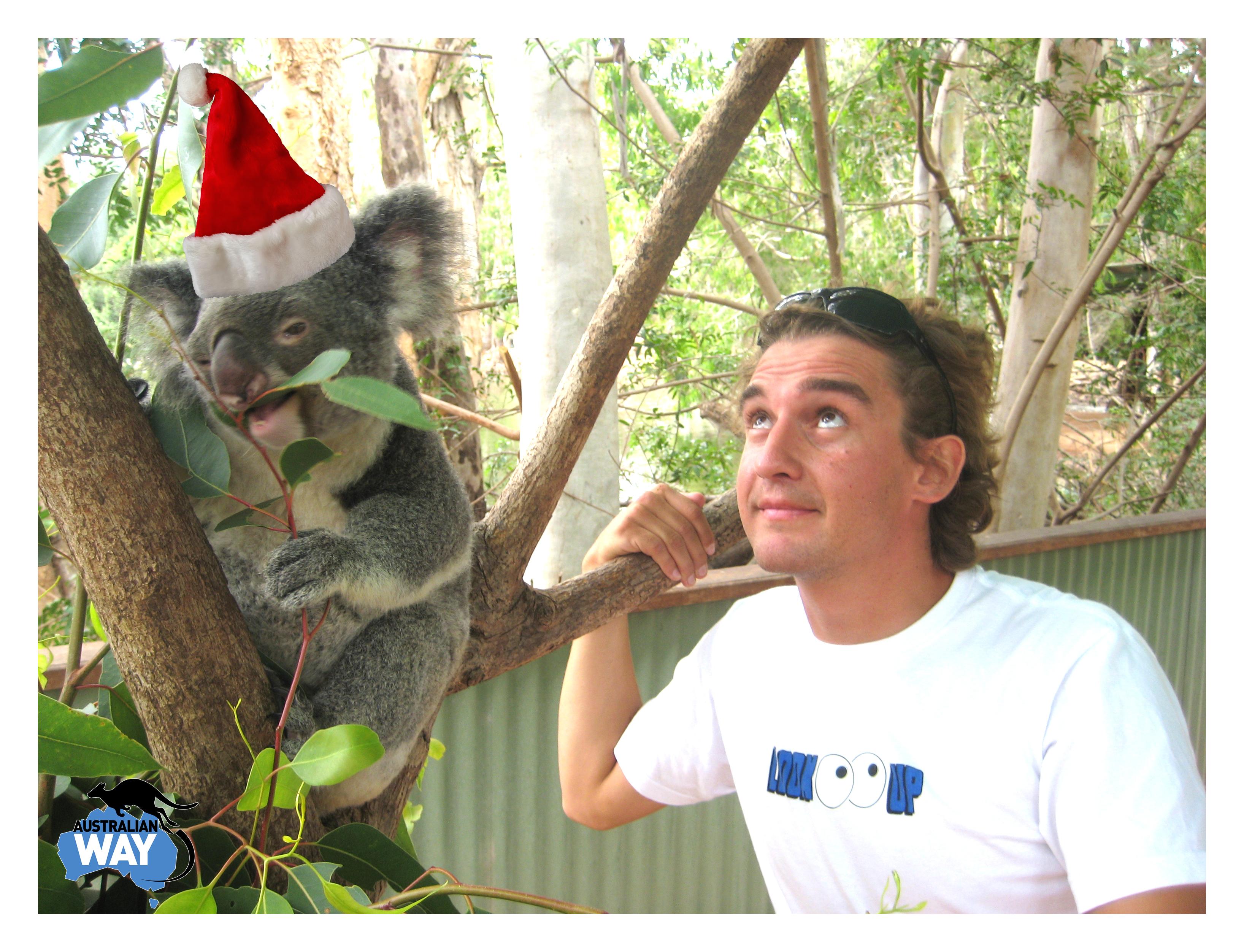 AUSTRALIAN WAY CHRISTMAS, estudiar en australia, australian way2